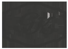 Meistergürtel Logo
